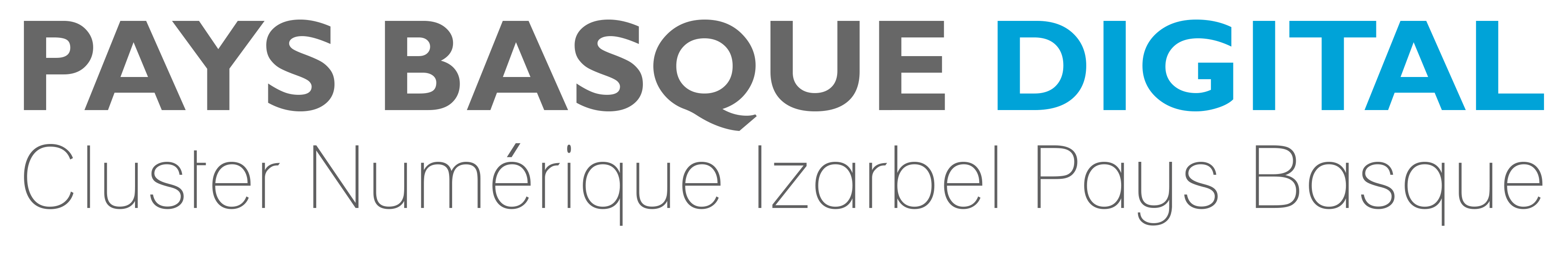 Logo Cluster Pays Basque Digital